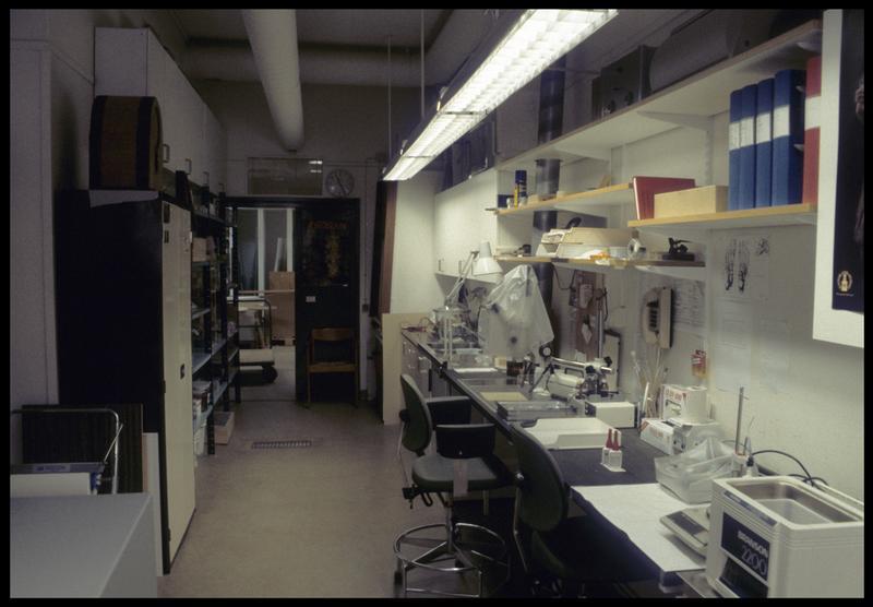 Vue du laboratoire de restauration du musée.