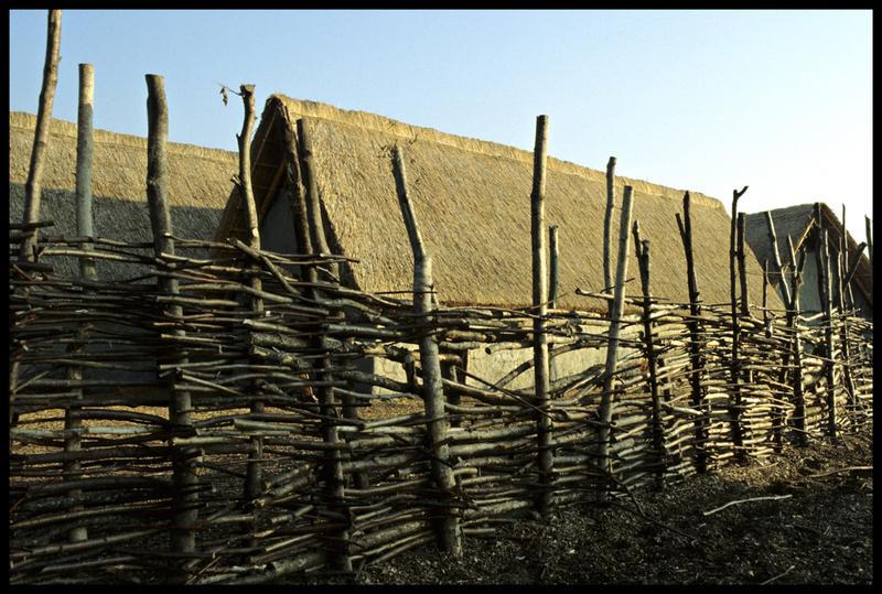 Vue de la reconstitution de la palissade entourant le village.