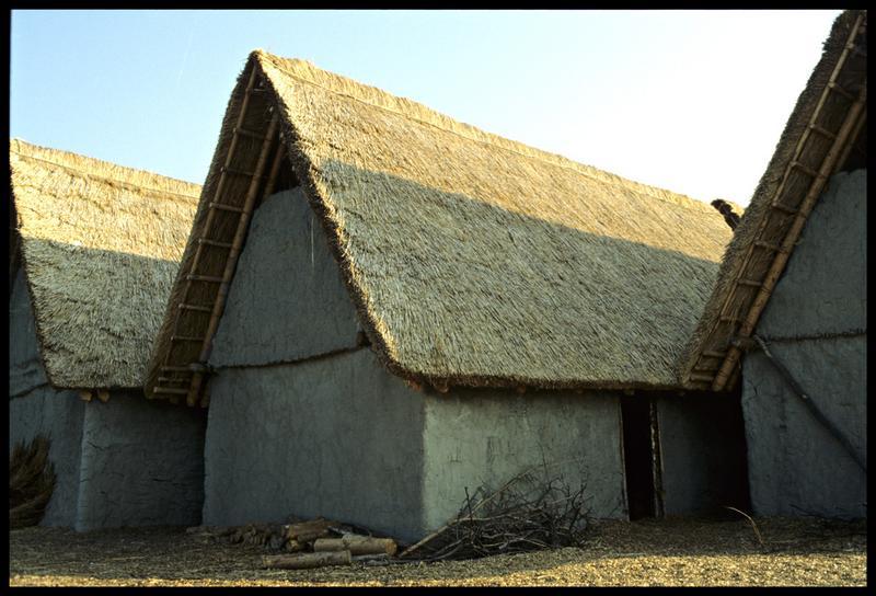 Vue d'une cabane au toit de chaume.