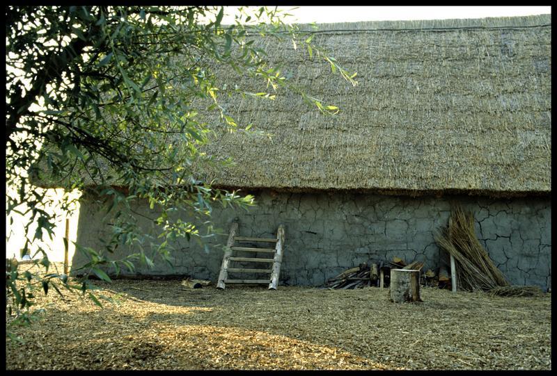 Vue du mur et de la toiture de la cabane.