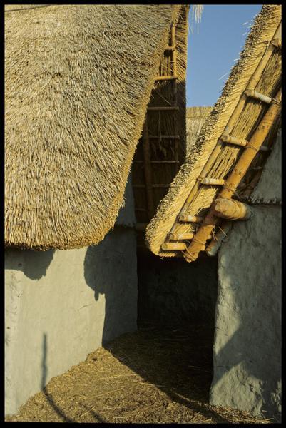 Vue de la toiture des cabanes.