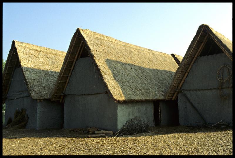 Vue des pignons des cabanes côté terre.