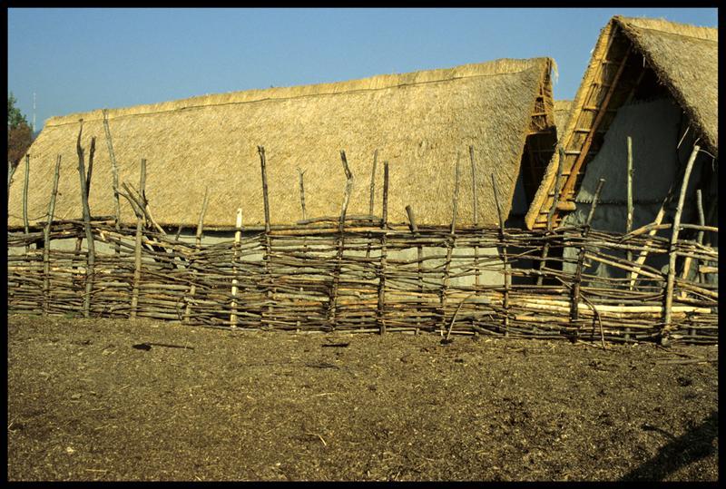 Vue de la palissade autour du village.