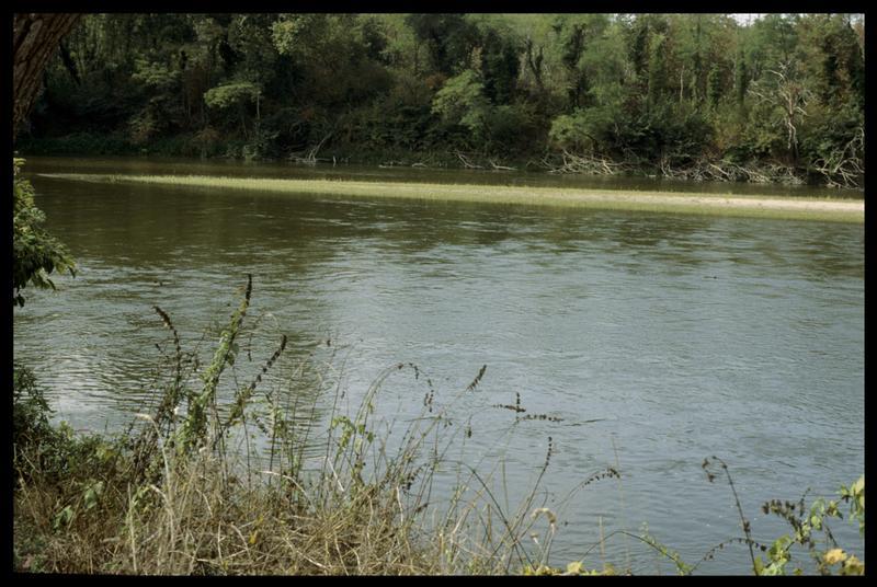 Vue de la rive en aval (fouille E. Rieth).