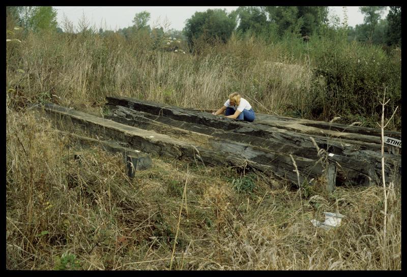 Vue des bois sortis par l'entreprise Berthet (fouille E. Rieth).