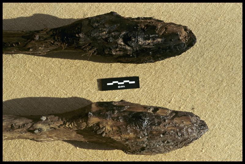 Vue de détail de l'extrémité du moulage (en bas) et de l'original d'un pieu de bois (CNRAS).