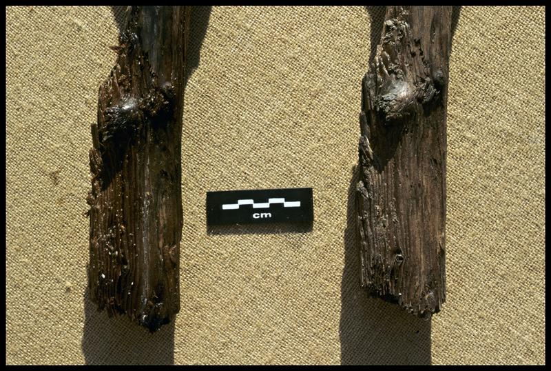 Vue de détail de l'extrémité du moulage (à droite) et de l'originale d'un pieu de bois (CNRAS).