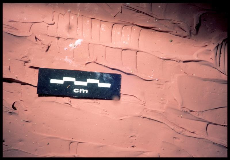 Vue sous-marine de détail de la couche de silicone sur le bois de la carène (fouille S. Ximénès).