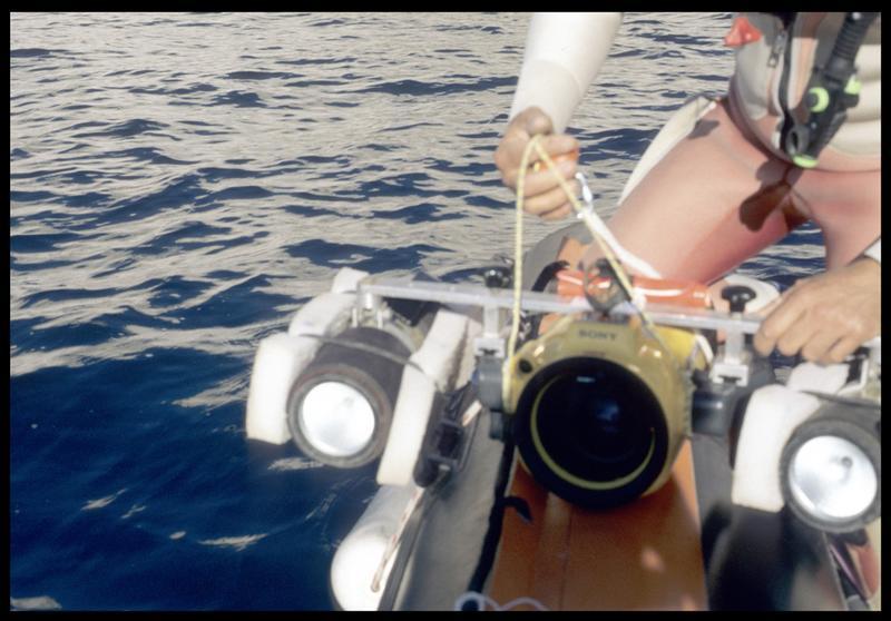 Vue de la mise à l'eau du caisson de la vidéo (fouille S. Ximénès).
