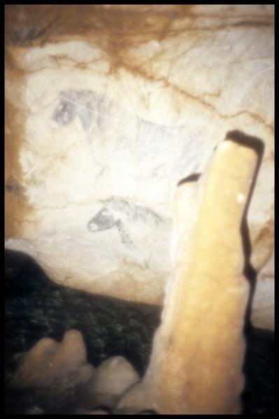 Vue des chevaux de la salle des petits chevaux (fouille J. Courtin, J. Clottes).