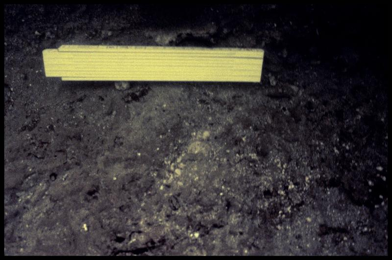 Vue sous-marine des fonds (fouille Y. Billaud/Drassm).