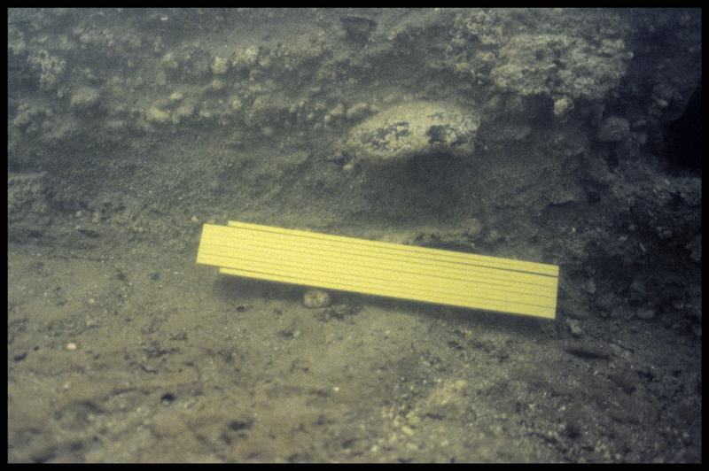 Vue sous-marine de la stratigraphie (fouille Y. Billaud/Drassm).