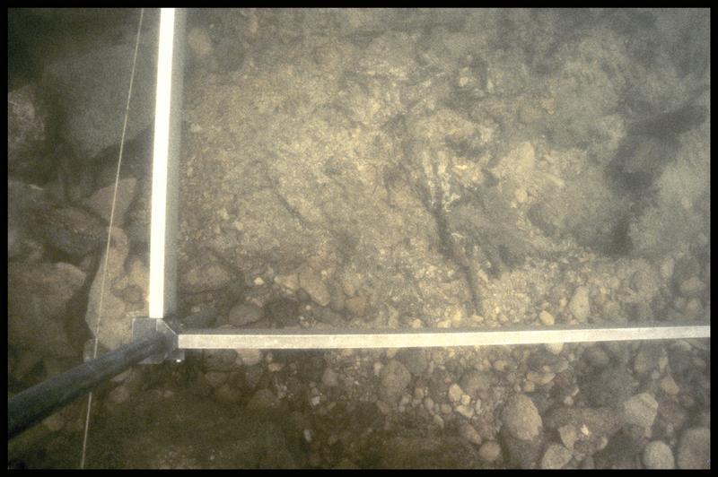 Vue sous-marine du pied du carroyage (fouille Y. Billaud/Drassm).