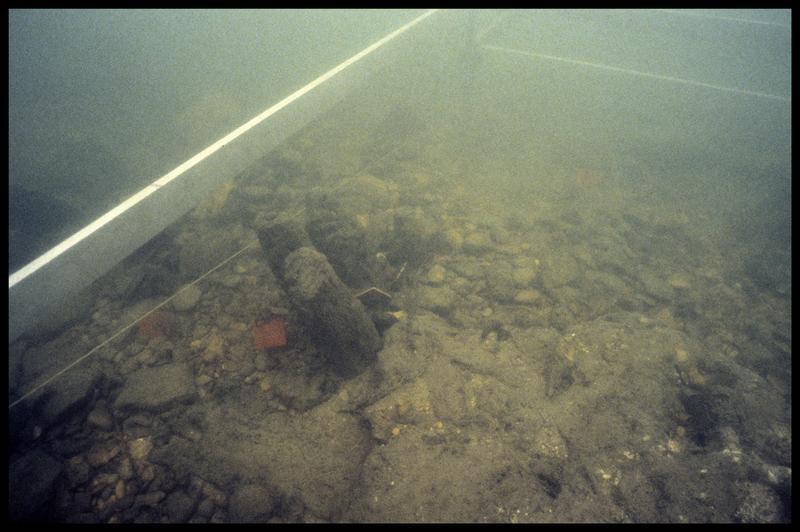 Vue sous-marine d'un pieu de bois in situ (fouille Y. Billaud/Drassm).