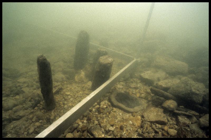 Vue sous-marine de quatre pieux de bois in situ (fouille Y. Billaud/Drassm).