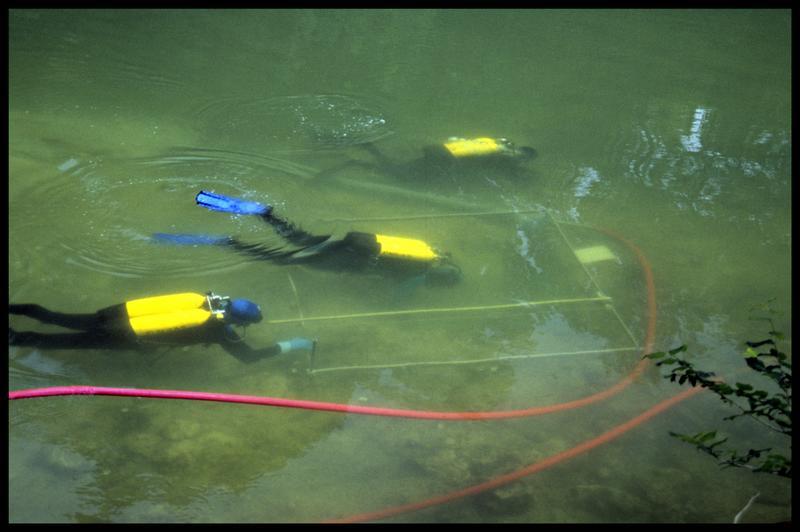 Vue de trois plongeurs depuis la surface (fouille Y. Billaud/Drassm).