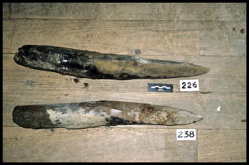 Vue des pieux de bois 238 et 226 (fouille Y. Billaud/Drassm).