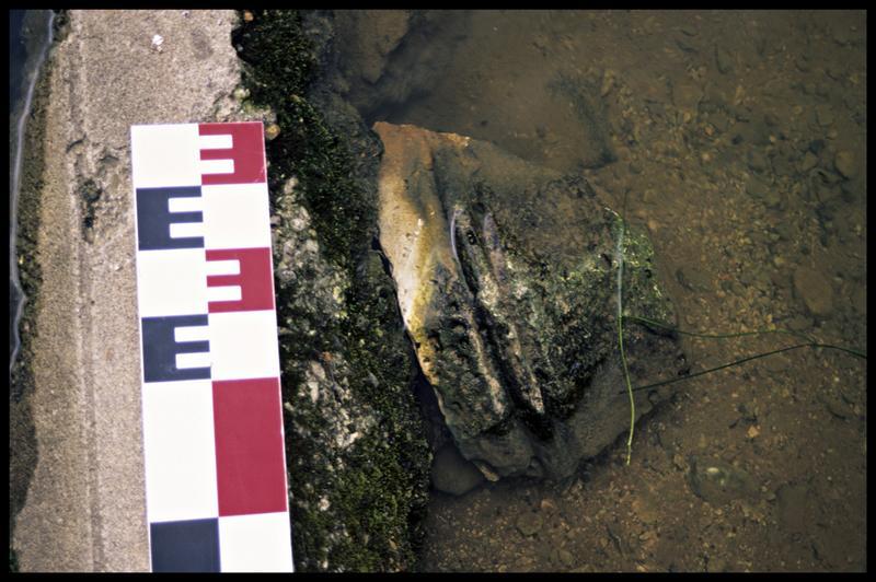 Vue d'une pierre taillée du Bouillant (fouille Y. Billaud/Drassm).