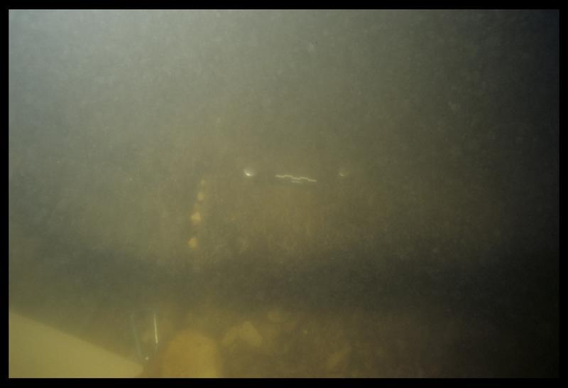 Vue sous-marine du bois d'une des épaves (fouille E. Rieth).