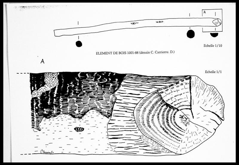 Vue du dessin du bois 1001-88 (fouille E. Rieth).