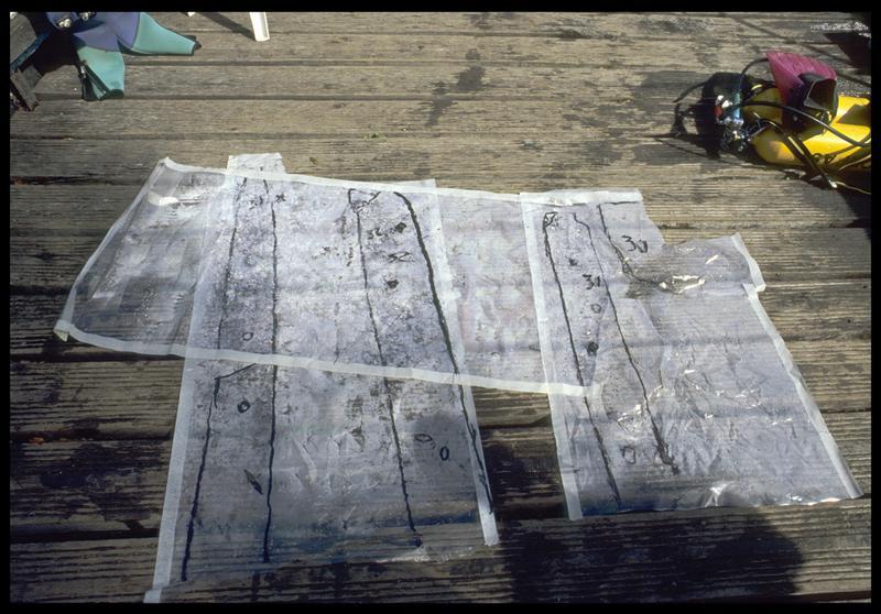 Vue des relevés de pièces de bois sur film transparent (fouille E. Rieth).