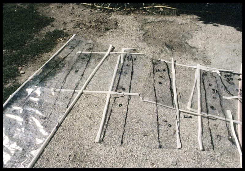 Vue du relevé des pièces de la carène sur film transparent (fouille E. Rieth).