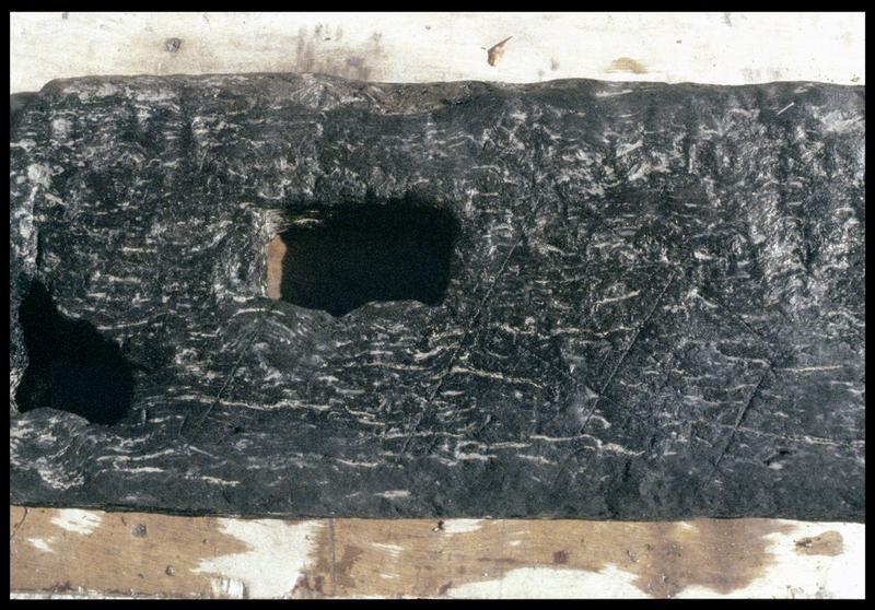 Vue de détail des cavités et des traces d'outil de la pièce de bois PLI3 (fouille E. Rieth).