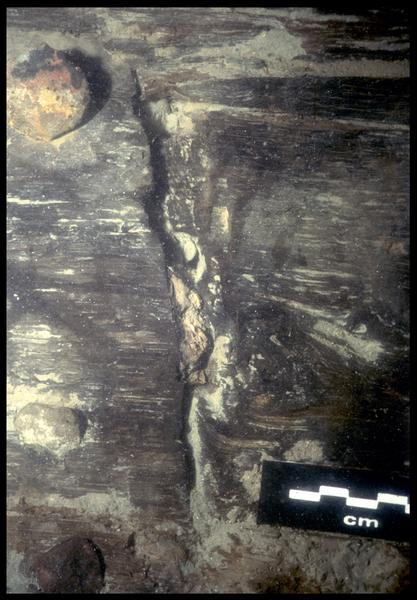 Vue sous-marine de détail du calfat entre deux virures (fouille E. Rieth).