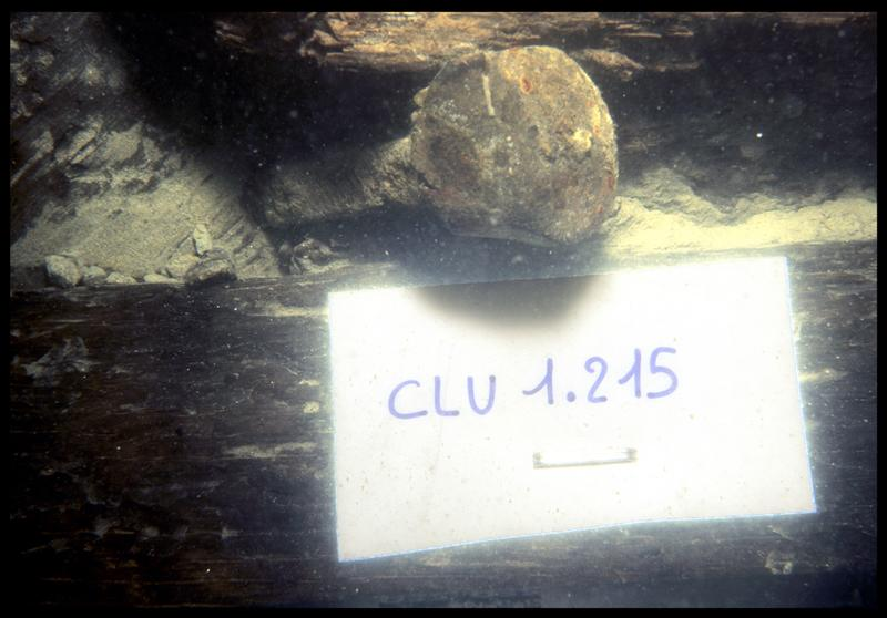 Vue sous-marine du clou 1-215 in situ (fouille E. Rieth).