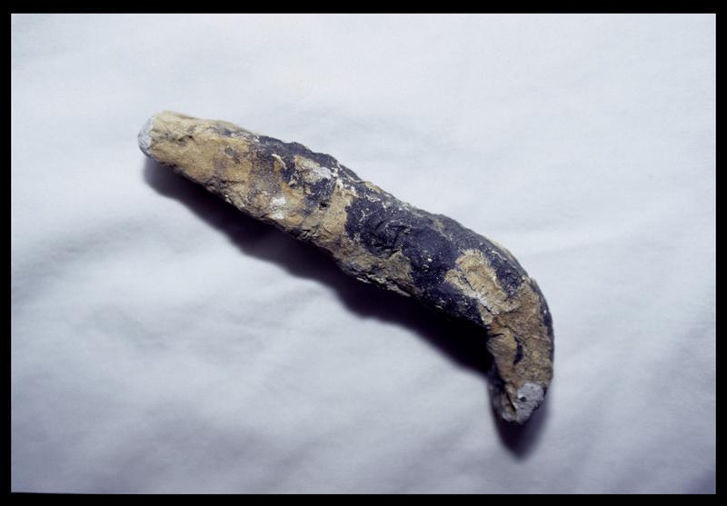 Vue d'un élément métallique (fouille D. David).
