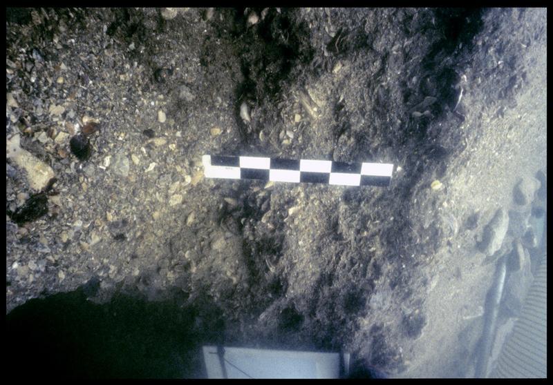Vue sous-marine de la stratigraphie (fouille F. Leroy/Drassm).