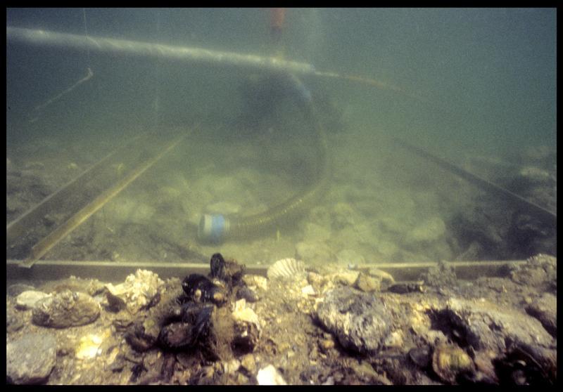 Vue sous-marine du carré de sondage et de la suceuse à eau (fouille F. Leroy/Drassm).