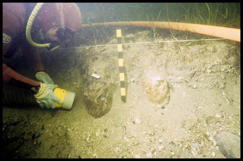 Vue sous-marine d'un plongeur dévasant deux pieux de bois à la suceuse à eau (fouille F. Leroy/Drassm).