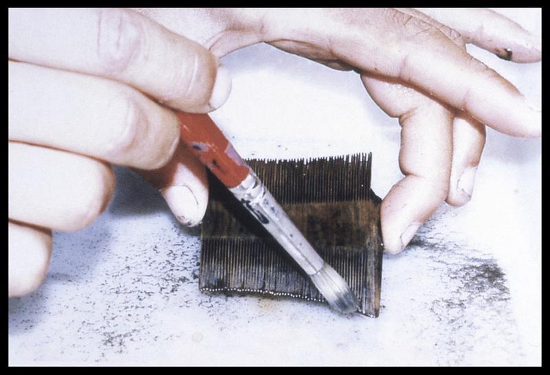 Vue du nettoyage au pinceau d'un peigne en bois (fouille M. L'Hour/Drassm, E. Veyrat/Drassm).