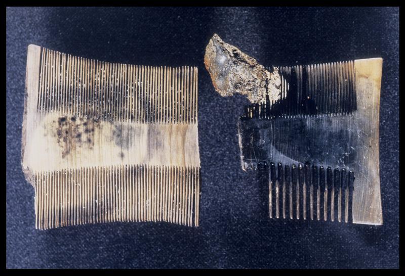 Vue de deux peignes en os (fouille M. L'Hour/Drassm, E. Veyrat/Drassm).