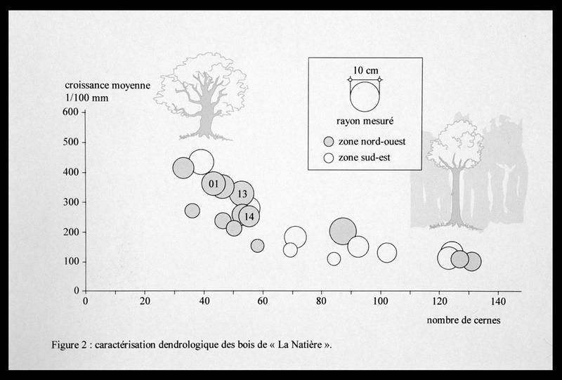 Vue du tableau des caractéristiques dendrologiques des bois de carène (fouille M. L'Hour/Drassm, E. Veyrat/Drassm).