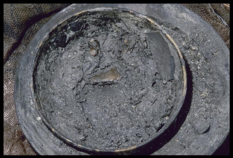 Vue des arêtes de morue dans un égouttoir en cuivre (fouille M. L'Hour/Drassm, E. Veyrat/Drassm).