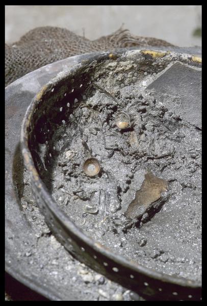 Vue des arêtes de morue dans l'égouttoir de cuivre (fouille M. L'Hour/Drassm, E. Veyrat/Drassm).