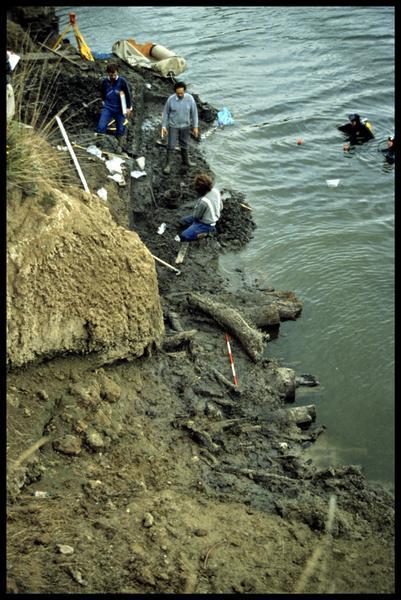Vue des plongeurs et de l'étude de la stratigraphie des berges avec ses troncs (fouille CNRAS).
