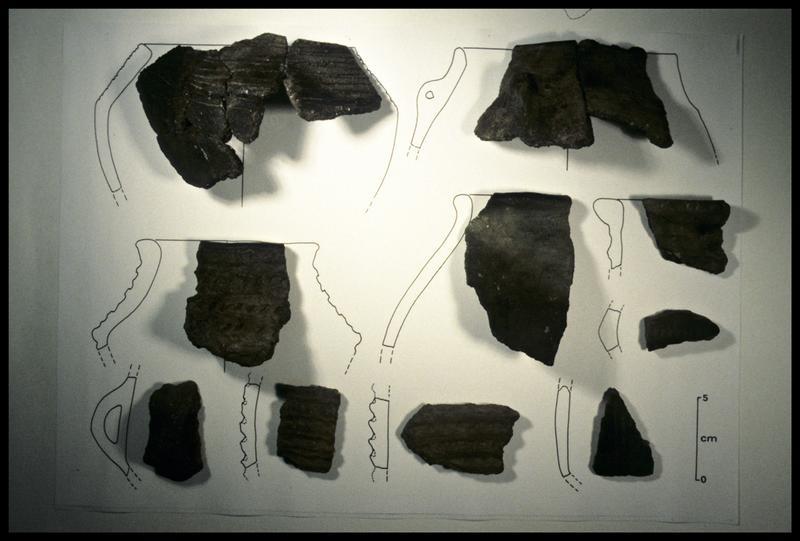 Vue des fragments de céramique identifiés selon leur forme (fouille CNRAS).