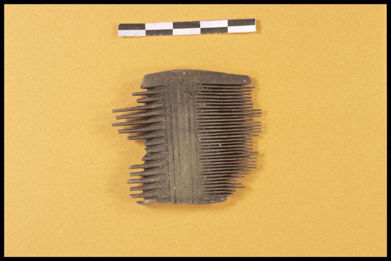Vue d'un peigne de bois (fouille CNRAS).