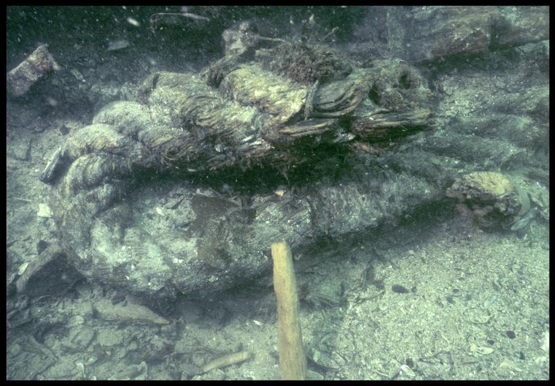 Vue sous-marine d'un fragment de cordage de chanvre (fouille M. L'Hour/Drassm, E. Veyrat/Drassm).