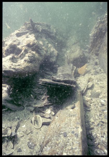 Vue sous-marine d'un chaussure de cuir in situ (fouille M. L'Hour/Drassm, E. Veyrat/Drassm).