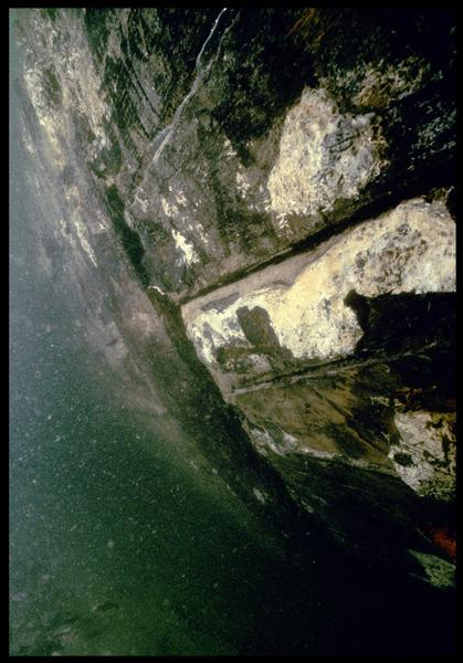 Vue sous-marine de détail des bordés de la carène (fouille M. L'Hour/Drassm, E. Veyrat/Drassm).