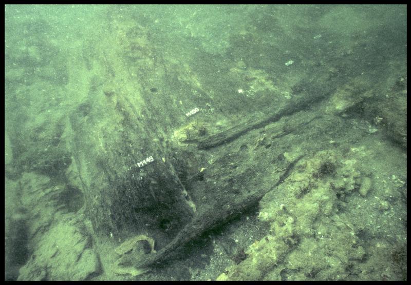 Vue sous-marine des membrures 149 à 152 in situ (fouille M. L'Hour/Drassm, E. Veyrat/Drassm).