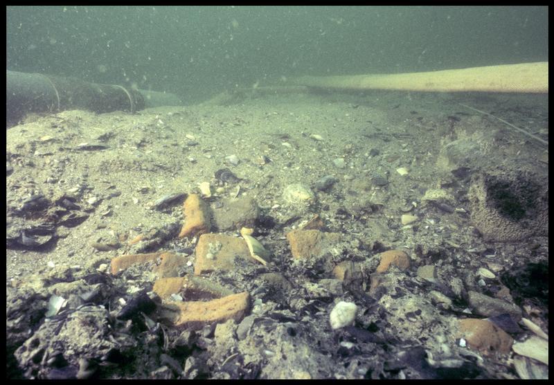 Vue sous-marine de détail de fragments de brique et céramique in situ (fouille M. L'Hour/Drassm, E. Veyrat/Drassm).
