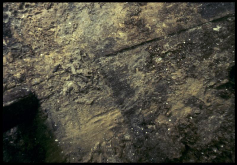 Vue sous-marine de détail du bois de la carène (fouille M. L'Hour/Drassm, E. Veyrat/Drassm).