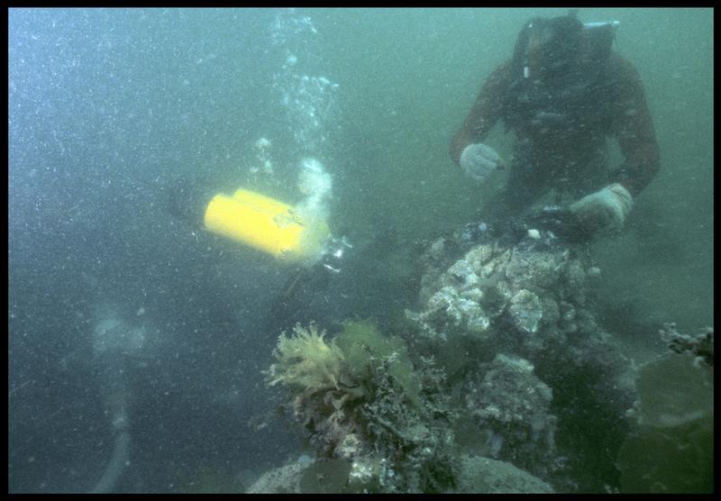 Vue sous-marine de deux plongeurs sur la carène (fouille M. L'Hour/Drassm, E. Veyrat/Drassm).