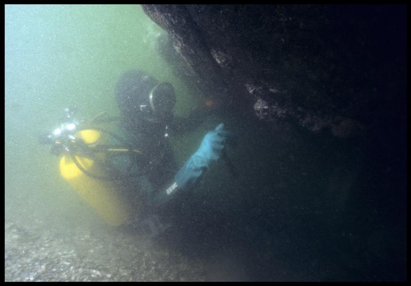 Vue sous-marine d'un plongeur effectuant le prélèvement du vaigrage(fouille M. L'Hour/Drassm, E. Veyrat/Drassm).