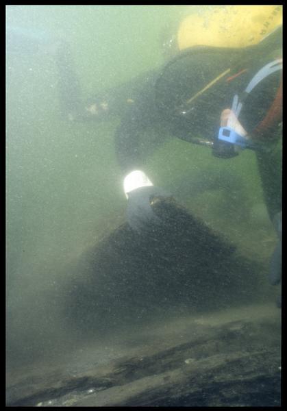 Vue sous-marine d'un plongeur prélevant un fragment de vaigrage(fouille M. L'Hour/Drassm, E. Veyrat/Drassm).